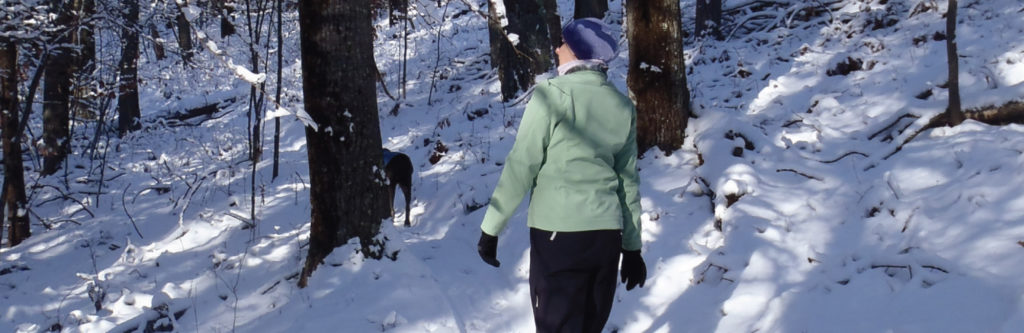 Get out and snowshoe in Manistee County