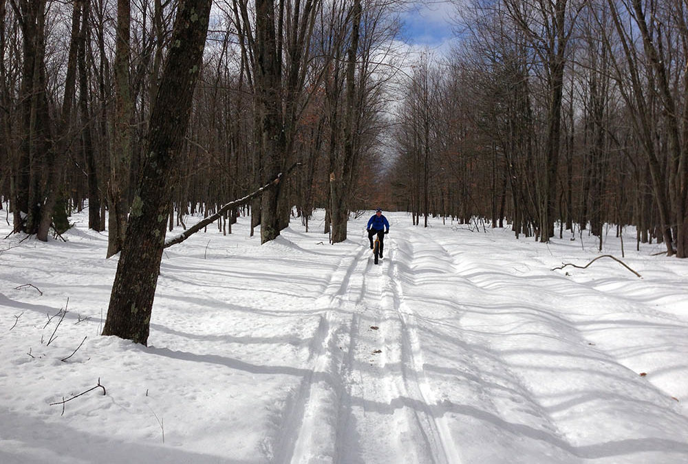 Winter Fat Biking in Manistee County