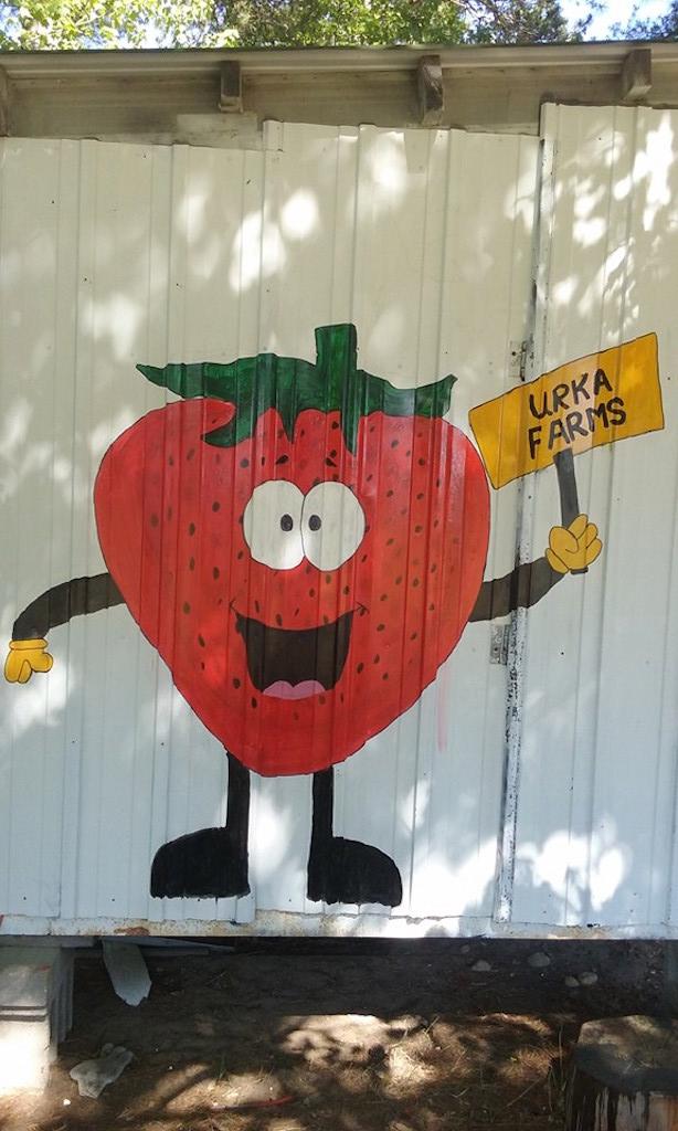 Urka Farms