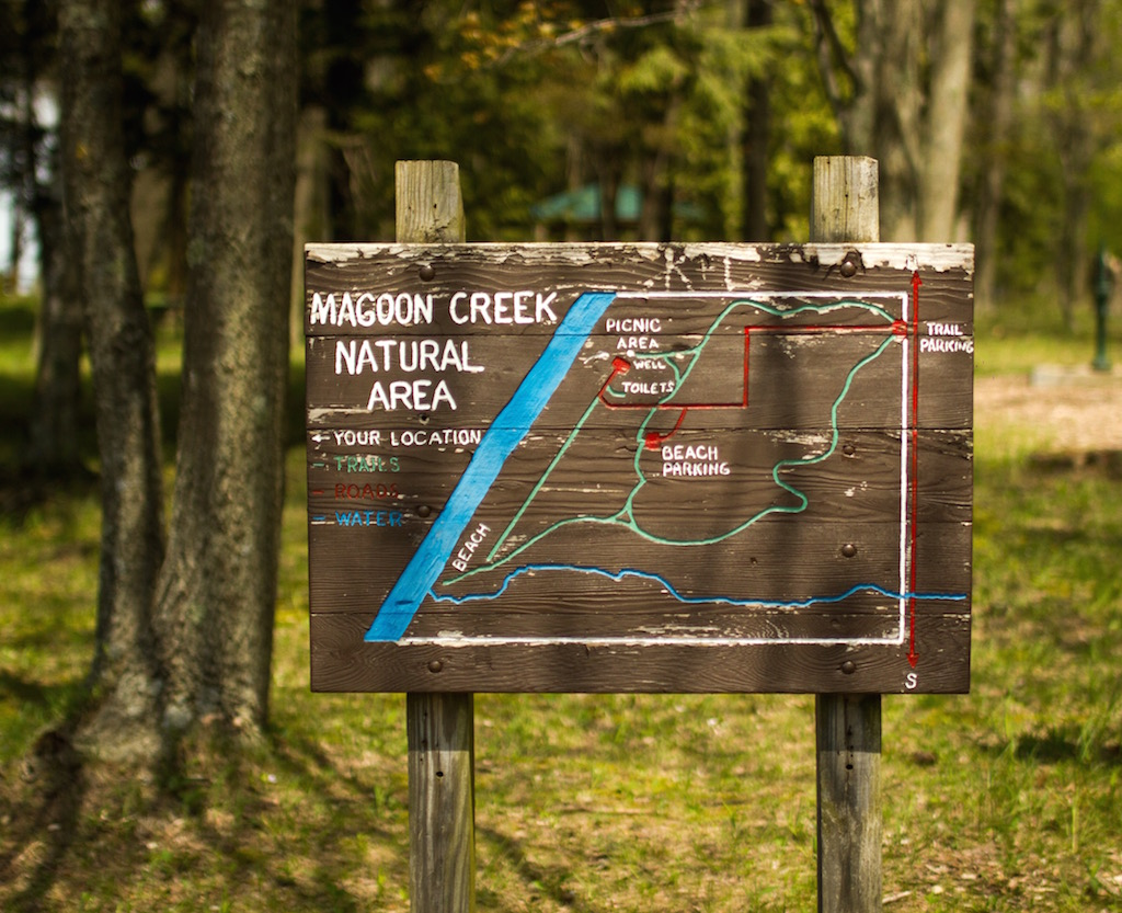 Magoon Creek - photo credit Andrew Allen