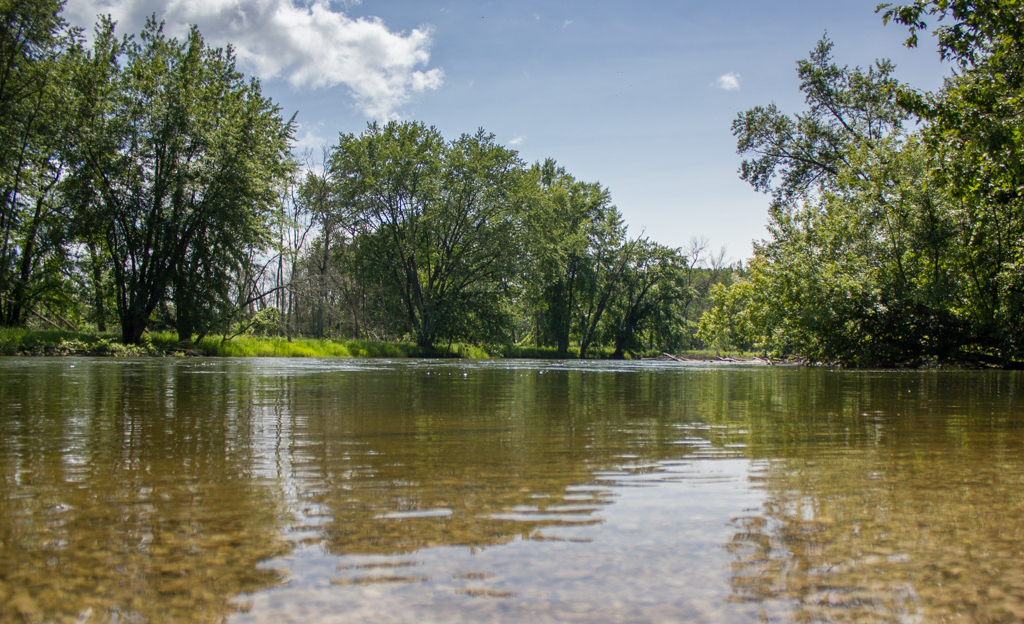 USFS Bear Creek Access on Manistee River