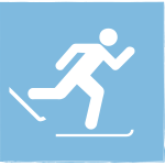 icon of cross country skier