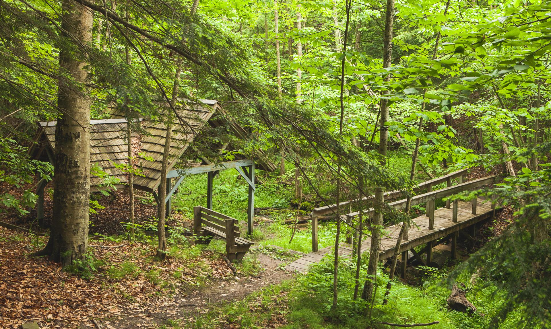 Glen Park Mineral Springs